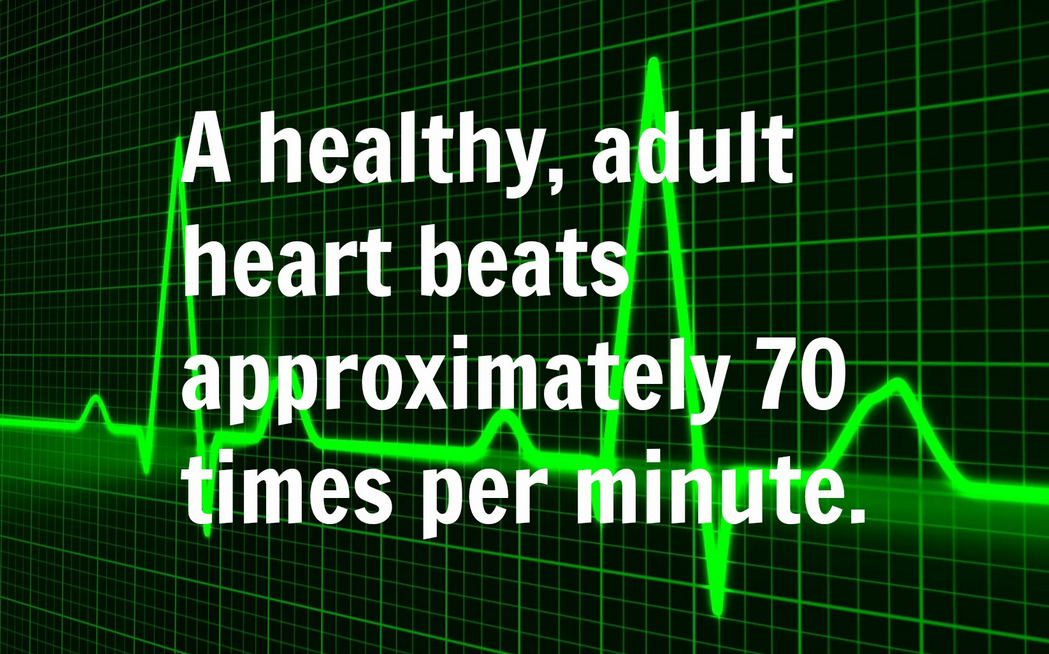 how many times does the heart beat in a day?