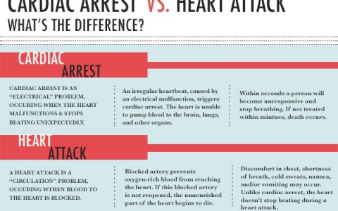 What is the Difference Between Cardiac Arrest and a Heart Attack?